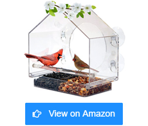 nature anywhere window bird house feeders