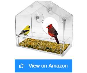 nature gear window bird feeders