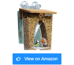 roamwild arch window wild bird feeders